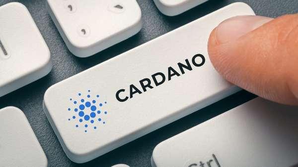 Как майнить cardano