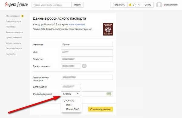 Ввод данных российского паспорта